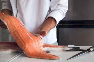 degustation saumon