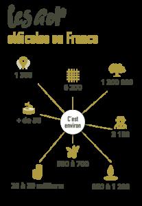 Schéma huiles d'olive France AOP